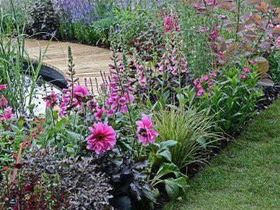 Tips från trädgårdsplaneraren - Teri-Hus