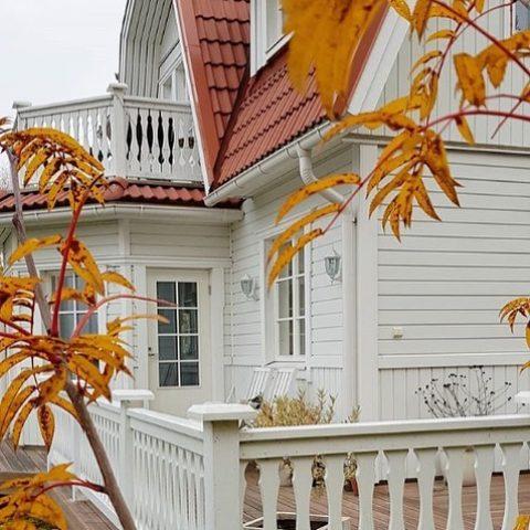 Nyt nautitaan syksystä ja sen upeista väreistä! 🧡🍁 Nu njuter vi av hösten och alla dess vackra färger! 🧡🍁 Kuva/Foto @villa_eden_  #teritalot #terihus